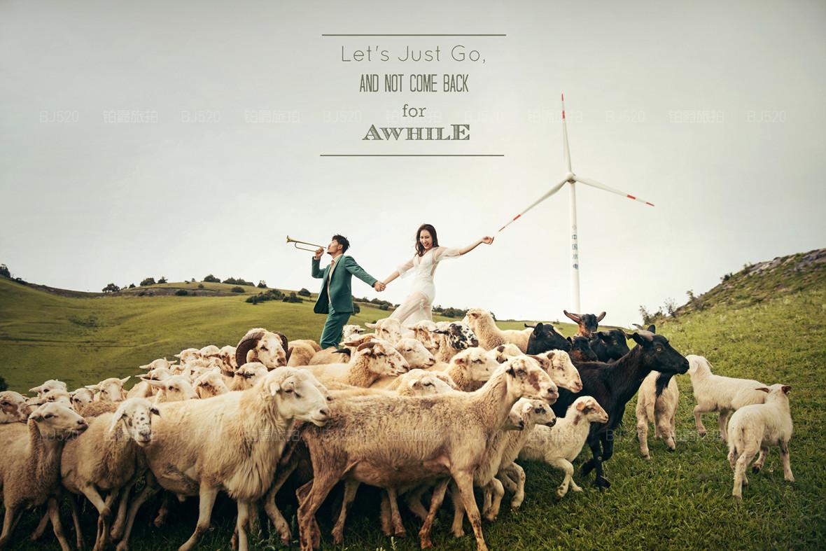 厦门婚纱摄影技巧介绍 能带宠物一起拍婚纱照吗?