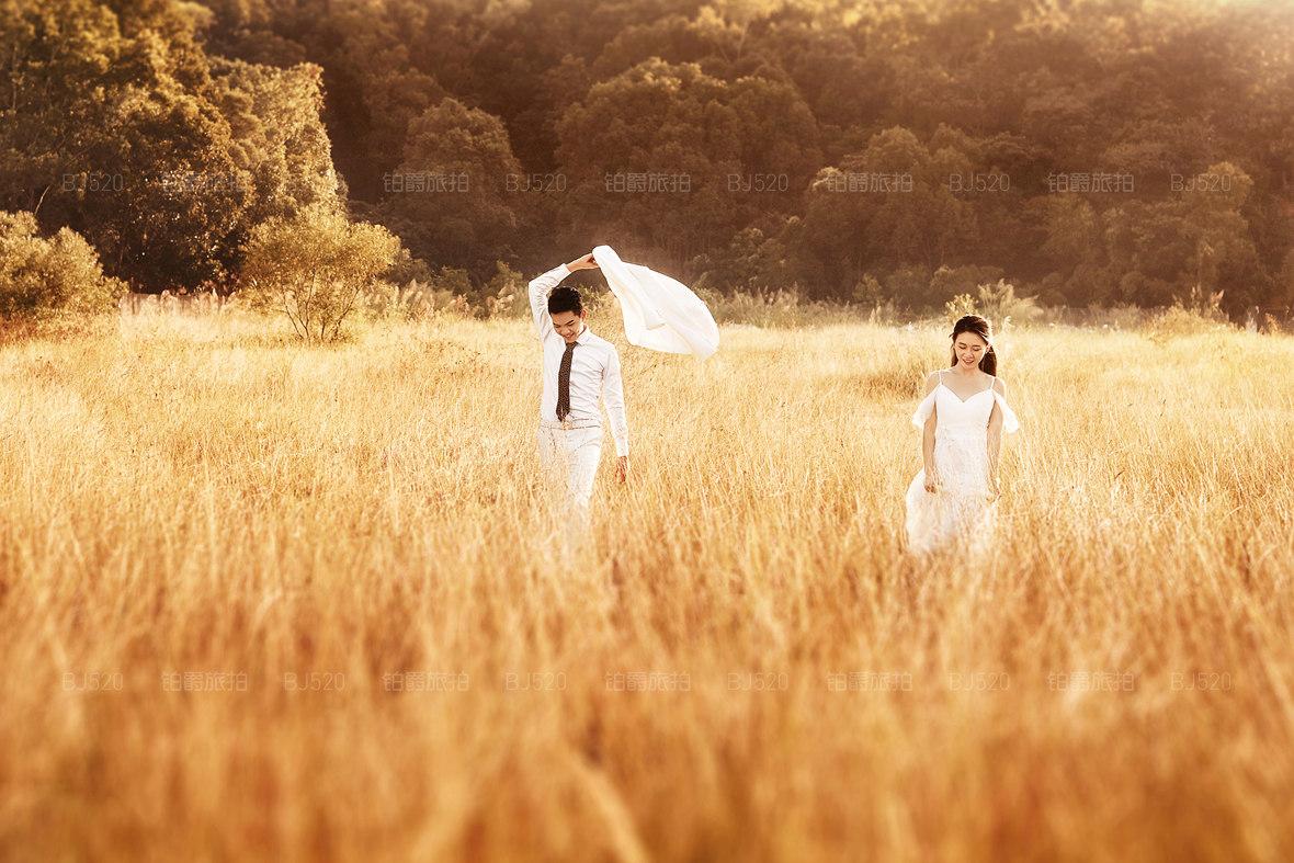 女生都爱的薰衣草婚纱摄影