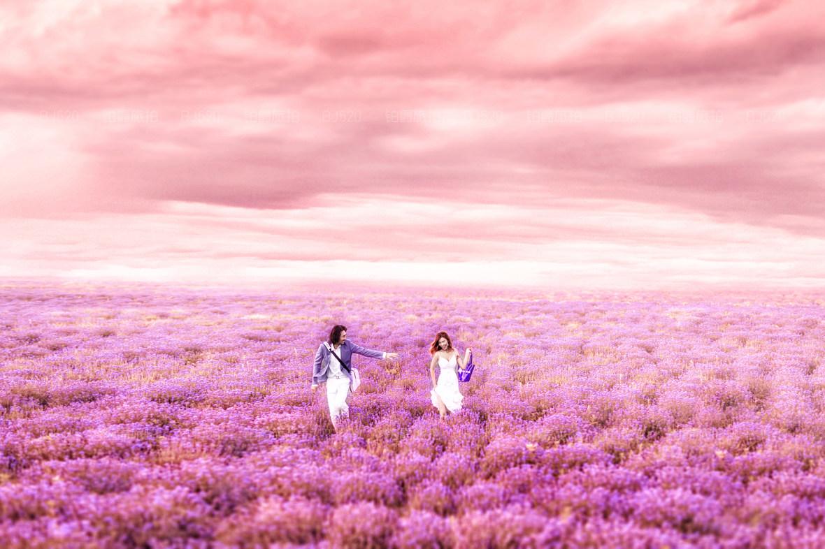 薰衣草婚纱照拍摄场景介绍 薰衣草的花期是什么时候?