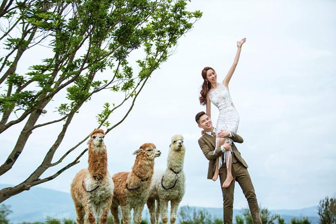 短发婚纱照拍摄会不会很丑 新娘拍婚纱照姿势要怎么摆